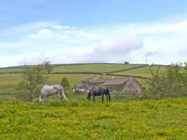 The Stable Cottage - Yorkshire Dales - 29670 - thumbnail photo 11