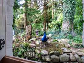 Conifers Cottage - North Wales - 380 - thumbnail photo 12