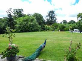 Conifers Cottage - North Wales - 380 - thumbnail photo 18