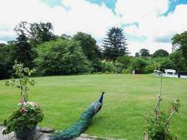 Gardeners Cottage - North Wales - 383 - thumbnail photo 14
