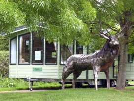 The Callow Lodge - Shropshire - 4057 - thumbnail photo 17