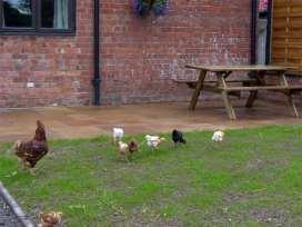 Betty's Barn - Shropshire - 4139 - thumbnail photo 13