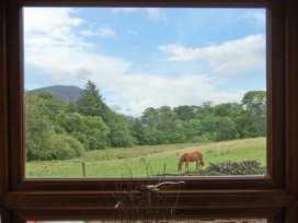 25 Tyn y Maes - North Wales - 4396 - thumbnail photo 10