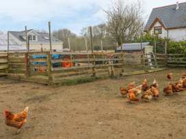 Tan Y Barn Cottage - Anglesey - 7082 - thumbnail photo 14