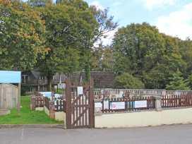 17 Dartmoor - Cornwall - 7262 - thumbnail photo 19
