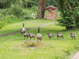 5 Lake View - Norfolk - 906532 - thumbnail photo 20