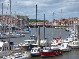 Raw Pastures - Whitby & North Yorkshire - 913267 - thumbnail photo 18