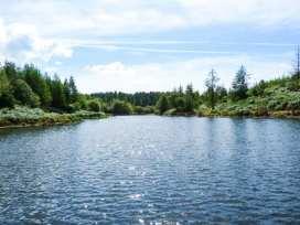 Briar - Lake District - 914054 - thumbnail photo 11