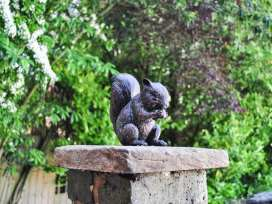 Squirrel Barn - Peak District - 915614 - thumbnail photo 34