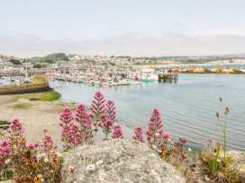 Kay Fin - Cornwall - 921470 - thumbnail photo 17