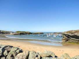 Y Nyth - Anglesey - 921679 - thumbnail photo 40