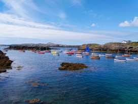 Y Nyth - Anglesey - 921679 - thumbnail photo 43