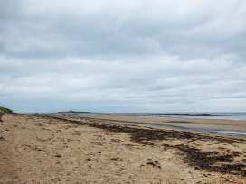 Sandy Knowes - Northumberland - 924140 - thumbnail photo 15