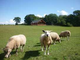Hampton Lodge - Shropshire - 925718 - thumbnail photo 23