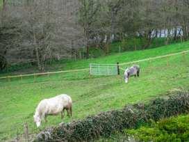 Little Cow House - Shropshire - 929056 - thumbnail photo 33