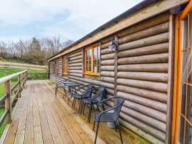 Caban Gwdihw ( Owl Cabin) - Mid Wales - 931452 - thumbnail photo 3