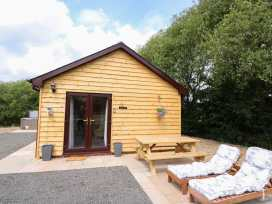 Cherry Tree Lodge - Mid Wales - 933626 - thumbnail photo 16