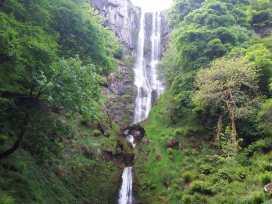 Bryn Gwalia Lodge - North Wales - 933762 - thumbnail photo 27