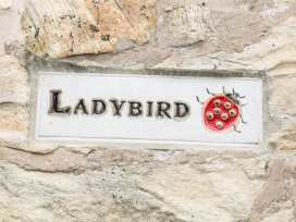 Ladybird - Peak District - 934393 - thumbnail photo 2