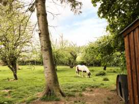 The Cartshed, Sedbury Park Farm - Yorkshire Dales - 934810 - thumbnail photo 15