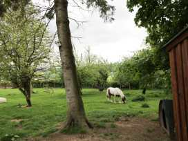The Stable, Sedbury Park Farm - Yorkshire Dales - 934811 - thumbnail photo 14