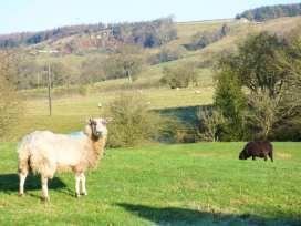 The Flour Pot - Whitby & North Yorkshire - 936971 - thumbnail photo 13