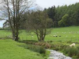 Hafan - Mid Wales - 939805 - thumbnail photo 17