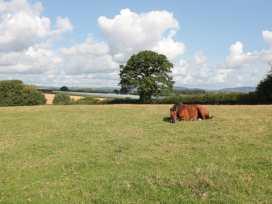 Hayloft - Herefordshire - 940499 - thumbnail photo 13