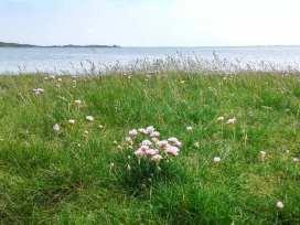 Shoreside - Scottish Lowlands - 940547 - thumbnail photo 14