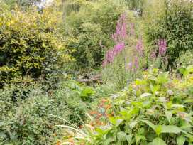 The Garden Cottage - Norfolk - 940718 - thumbnail photo 14