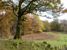 The Oaks - Lake District - 942045 - thumbnail photo 46