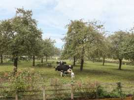 Orchard View - Herefordshire - 942060 - thumbnail photo 25