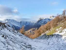Yew - Woodland Cottages - Lake District - 942516 - thumbnail photo 22