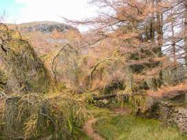 Hazel - Woodland Cottages - Lake District - 942517 - thumbnail photo 22