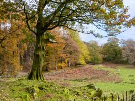 Beech - Woodland Cottages - Lake District - 942520 - thumbnail photo 19