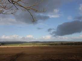 Amari - Whitby & North Yorkshire - 944846 - thumbnail photo 14