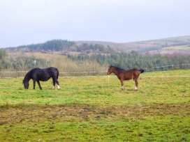 Radharc na Sleibthe - North Wales - 950274 - thumbnail photo 14
