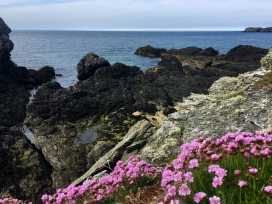 Trearddur Views - Anglesey - 950827 - thumbnail photo 35