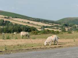 Upper Caerfaelog - Mid Wales - 950834 - thumbnail photo 32