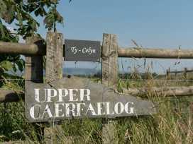 Upper Caerfaelog - Mid Wales - 950834 - thumbnail photo 2