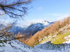 Cherry - Woodland Cottages - Lake District - 951728 - thumbnail photo 21