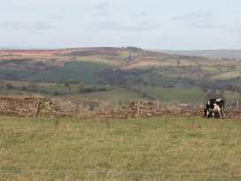 Sheldon Cottage - Peak District - 951830 - thumbnail photo 19