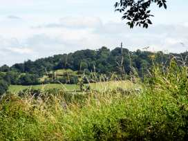 Bramble - Somerset & Wiltshire - 953366 - thumbnail photo 15