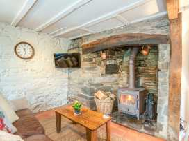 Ivy Cottage - Mid Wales - 954513 - thumbnail photo 7
