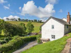 Ivy Cottage - Mid Wales - 954513 - thumbnail photo 3