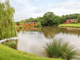 Callow Lodge 3 - Shropshire - 955134 - thumbnail photo 16