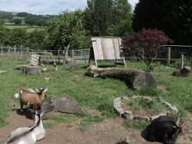 The Shire Hut - North Wales - 955259 - thumbnail photo 13