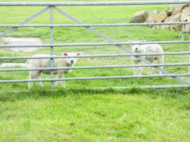 South Cottage - Yorkshire Dales - 957024 - thumbnail photo 23
