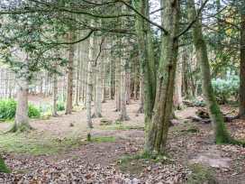 Nutkin Lodge - Scottish Lowlands - 957327 - thumbnail photo 13