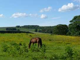 The Granary, Hurries Farm - Yorkshire Dales - 958042 - thumbnail photo 11